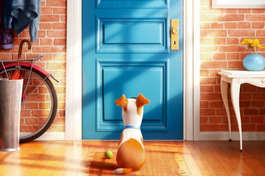 Max from The Seccret Life of Pets